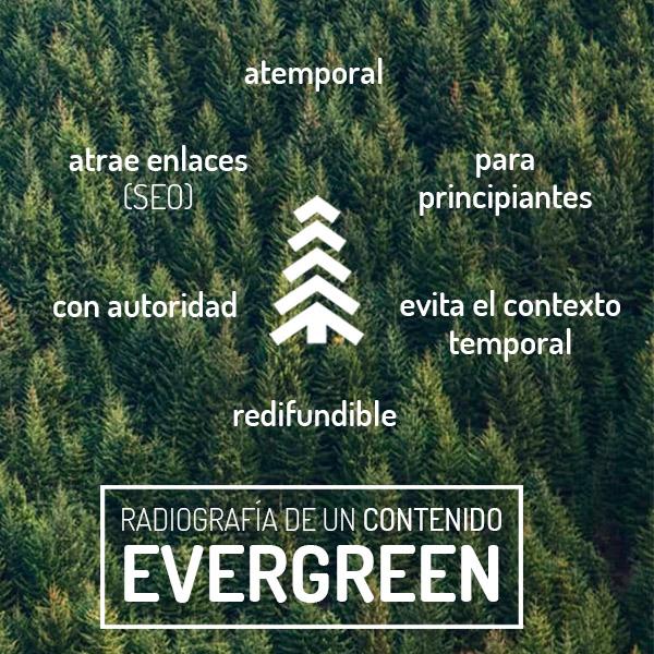 contenido evergreen, radiografía