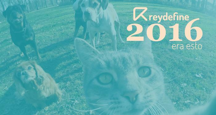 reydefine resumen 2016