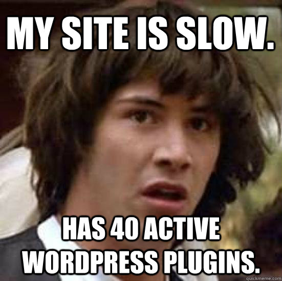 wordpress plugins meme
